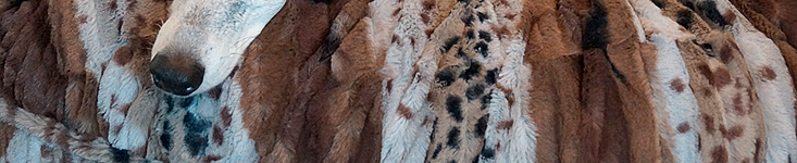 COSYBED  Fake Fur