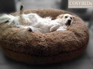 COSYBED  Air |  Longhair  Macciato