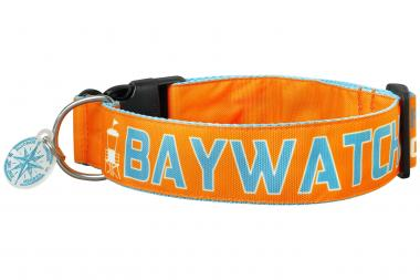SALTYDOG | COAST |BAYWATCH | ORANGE