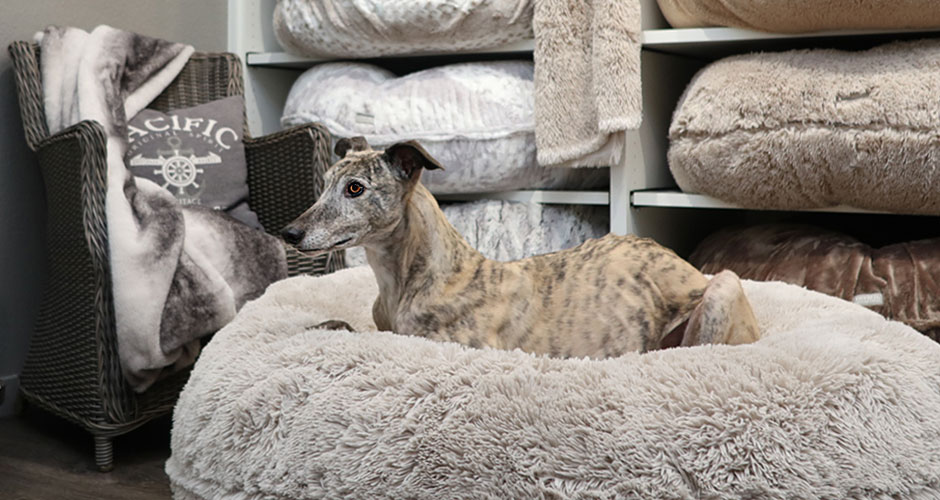 3 Banner Cosybed Whippet