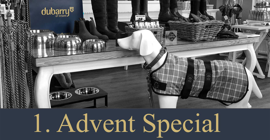 Advenst Special 1   Dubarry