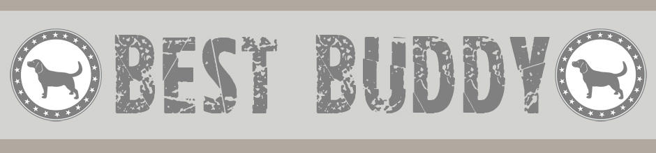 Banner  008 |  BEST BUDDy  MUD