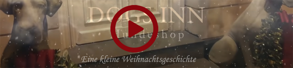 Banner 000  |  Video Weihnachten 2018