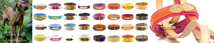 Banner 05  Soft Halsband Colourful